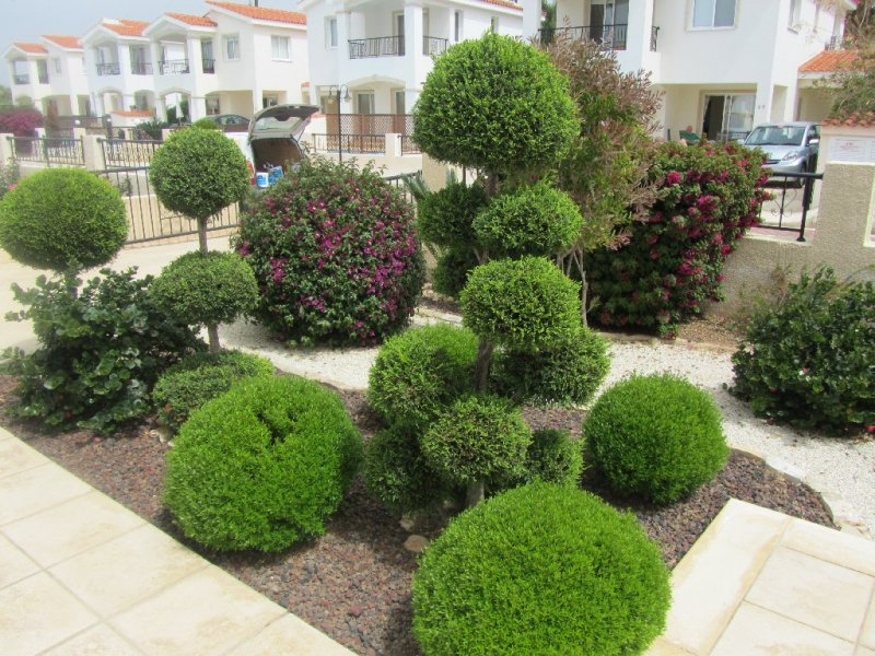 Wedding Decoration And Landscaping By Annivia Gardens In Paphos Cyprus