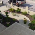 Landscaping Design & Maintenance